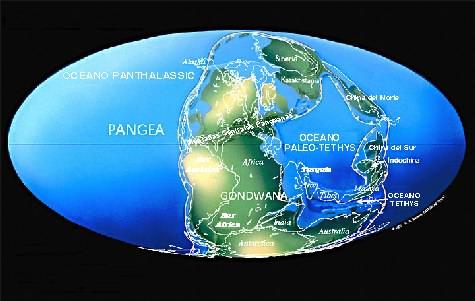 pangea_strip_sp.jpg