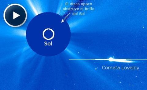 Comet Lovejoy (coronagraph splash, 512px)