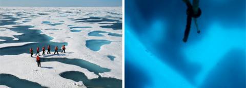 Icescape (windows, 558px)