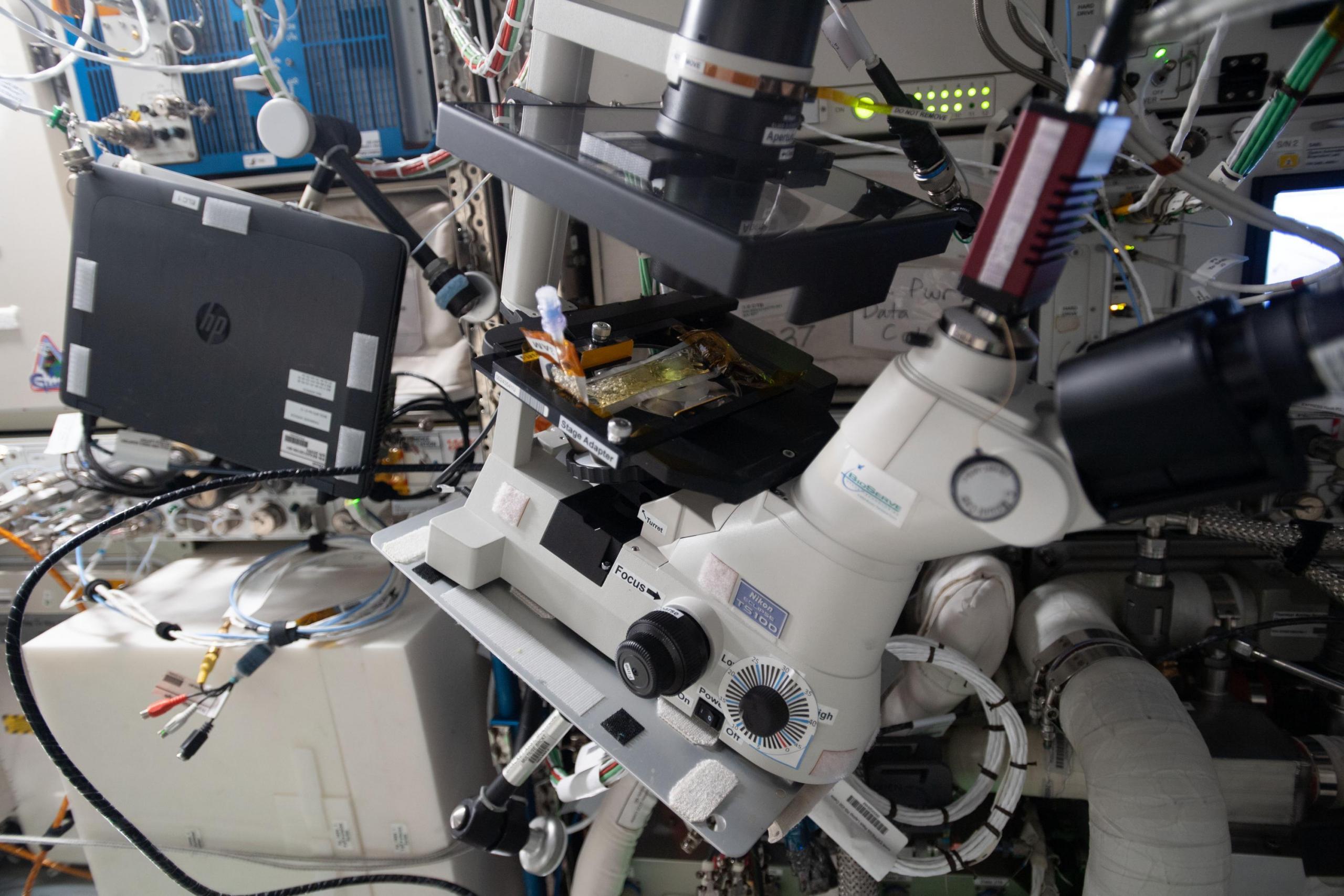 imagen del hardware del experimento