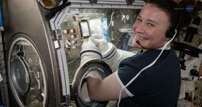 Las Cajas de Guantes de la EEI permiten realizar experimentos sobre materiales que no se querría que escapen hacia el interior del espacio cerrado de la estación espacial.