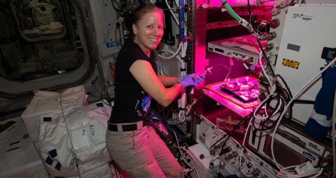 La astronauta Shannon Walker tiende a las plantas