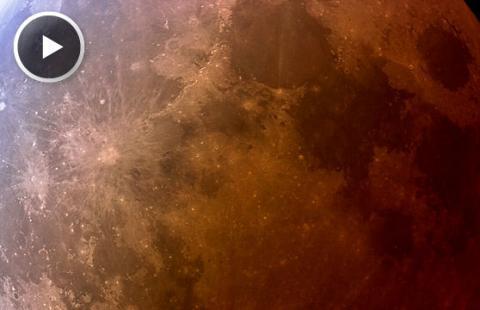Lunar Eclipse (splash, 558px)