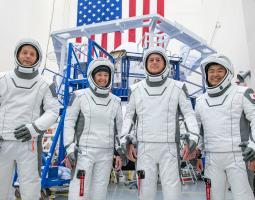 imagen de los miembros del equipo