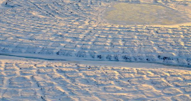 Tundra polygons on Alaska's North Slope