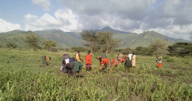 Photo of farmers working fields