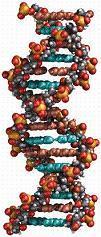 self-improving spacecraft? Like DNA...