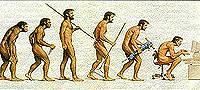evolutionsm.jpg
