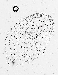 optical picture of Abell 2142 with x-ray contours