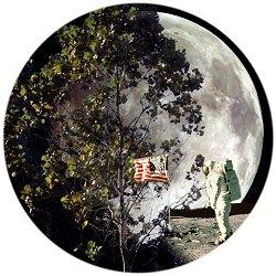 a picture of an astronaut on the Moon and a tree on Earth