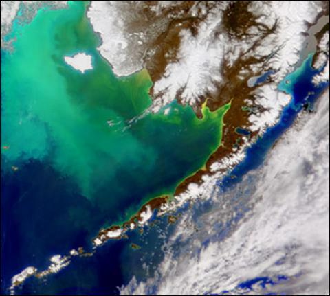 SeaWiFS - Bering Sea 2