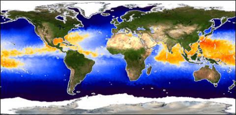 AMSR-E global sst