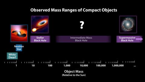 Observed Mass Ranges of Compact Objects