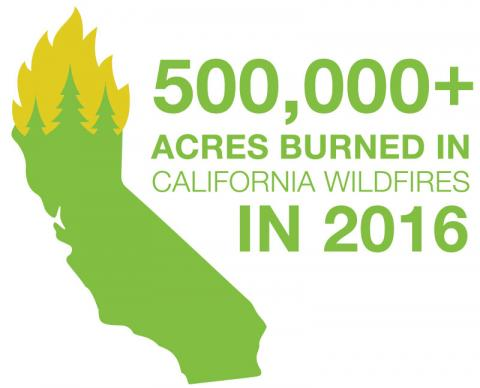 500,000 acres burned in California wildfires in 2016
