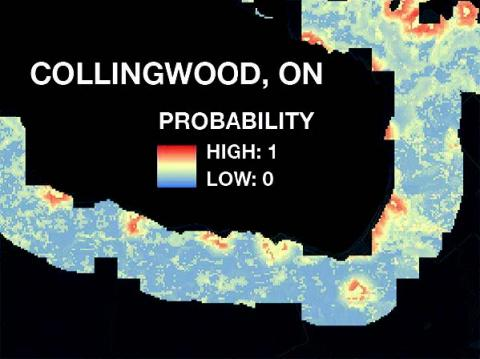 Color-coded risk map near Collingwood, Ontario, showing probability for Phragmites in red