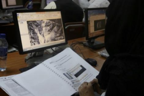 Photo of student reading data from manual and computer screen