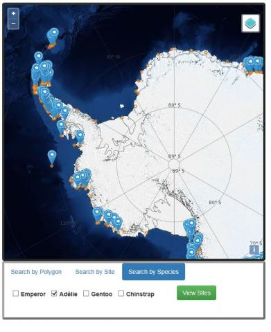 MAPPPD image of Adélie penguin colonies in West Antarctica