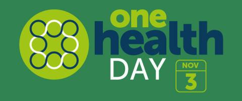 One Health Day banner