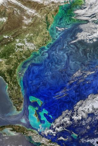 Ocean - 1.jpg