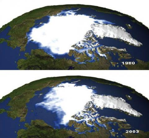 Two images of the earth illustrating the reduction in ice cover from 1980 to 2003