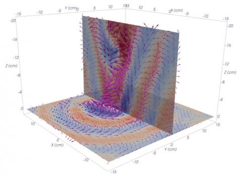 Image of whistle waves