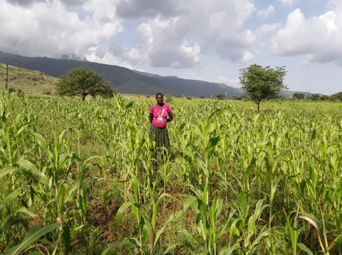 Photo of farmer standing in field