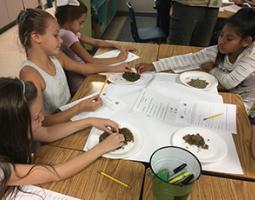 4th grade students examine small rocks on paper plates