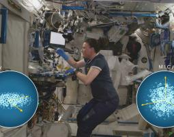 Biomanufacturing Aboard the ISS Poster