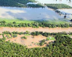 Civil Air Patrol (CAP) photograph of flooded woodland after Hurricane Harvey