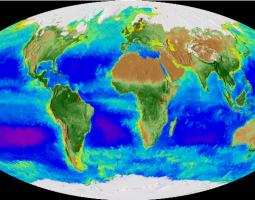 Visualization of global biosphere