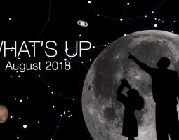 What's Up August 2018