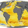 Satellite ocean data