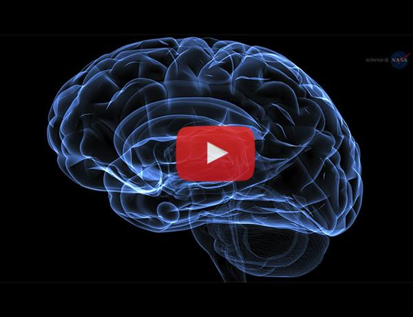 ScienceCasts: Subtracting Gravity from Alzheimer's