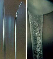 Low-g vs 1-g fibers
