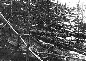 Tunguska explosion effects showing stripped and fallen trees