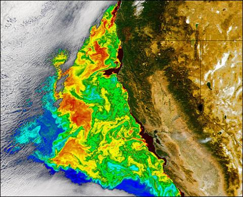 SeaWiFS - California Coast