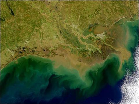 SeaWiFS - Louisiana Coast