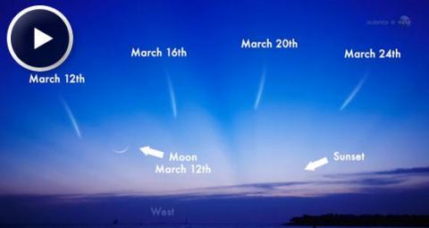 Comet Pan-STARRS (splash)