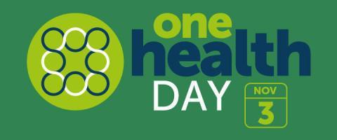 One Health Day banner