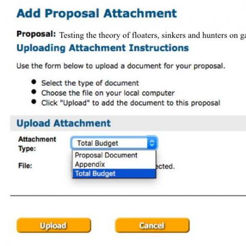Screenshot for adding attachment