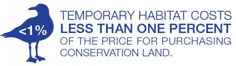 Temporary habitat costs less than one percent of the price for purchasing conservation land