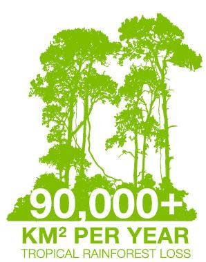 90,000 plus square kilometers per year tropical rainforest loss