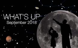 What's Up September 2018