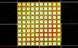 Photo of hybrid array